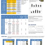 Poster Ibimet results 1